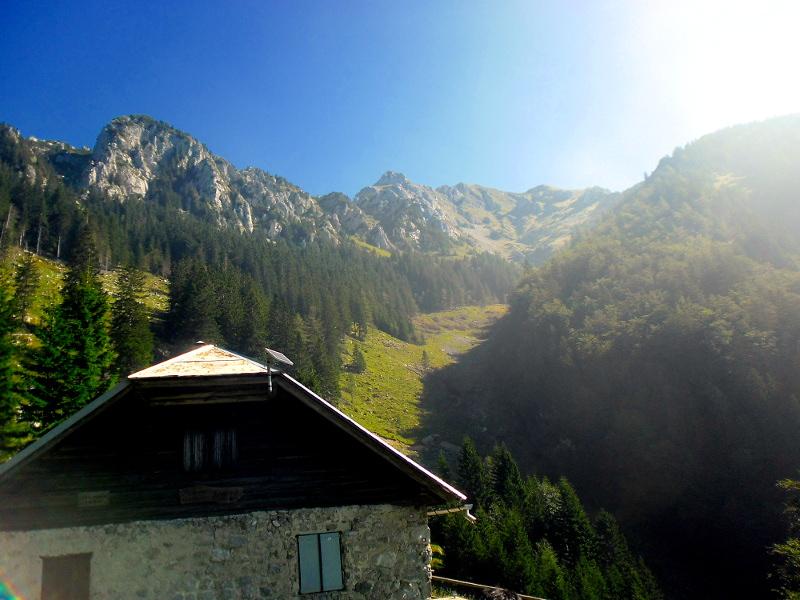 Planina Javornik pod Storžičem
